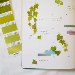 Appree | Pressed Flower Sticker Sheet: Ivy