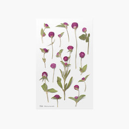 Appree | Pressed Flower Sticker Sheet: Globe Amaranth