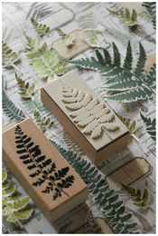 LCN | Fern Specimen stamp set D