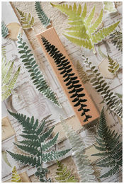 LCN | Fern Specimen stamp set A