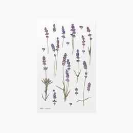 Appree | Pressed Flower Sticker Sheet: Lavender