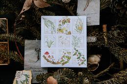 OURS Wild Plants 2 Stamp Stickers