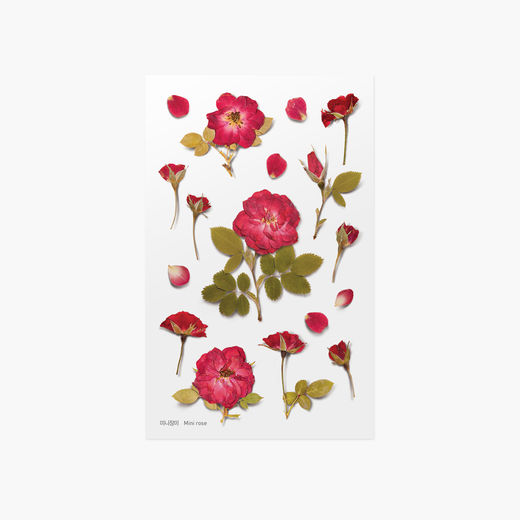 Appree | Pressed Flower Sticker Sheet: Mini Rose