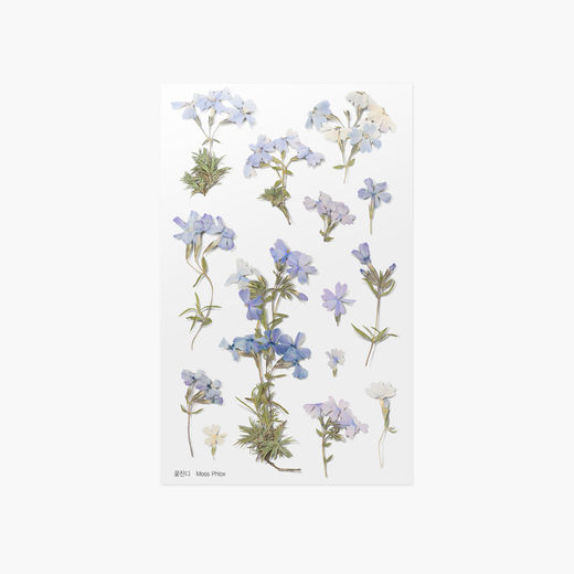 Appree | Pressed Flower Sticker Sheet: Moss phlox